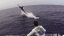 Рибар улови гигантски син марлин след 3 часа борба (ВИДЕО)