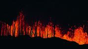 Горят над 300 декара вековна гора край Струмяни