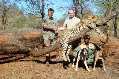 Зъболекарят, убил лъв в Зимбабве, е заплашен от публичен линч