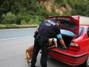 Ето как Frontex помага на нашите граничари (ГАЛЕРИЯ)