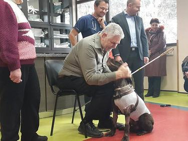 Резултат с изображение за Куче-водач беше спасено с уникална сърдечна операция
