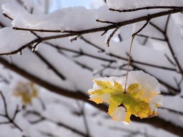 Снегът спира, само че за кратко
