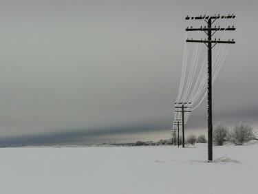 Петкова: България спира износа на ток