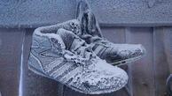 Как се оцелява на най-студеното място в света (СНИМКИ)