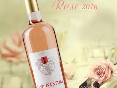 Бутиковата изба Uva Nestum посрещна пролетта с новото си розе