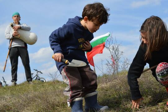 Залесяват България с 220 000 дръвчета