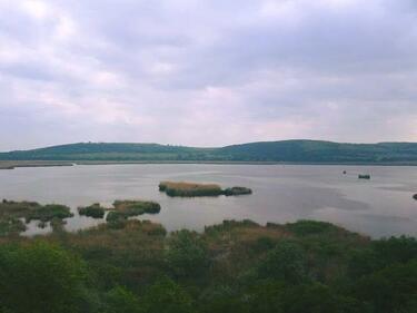 """Драстично намалява броят на традиционни обитатели на езерото """"Сребърна"""""""