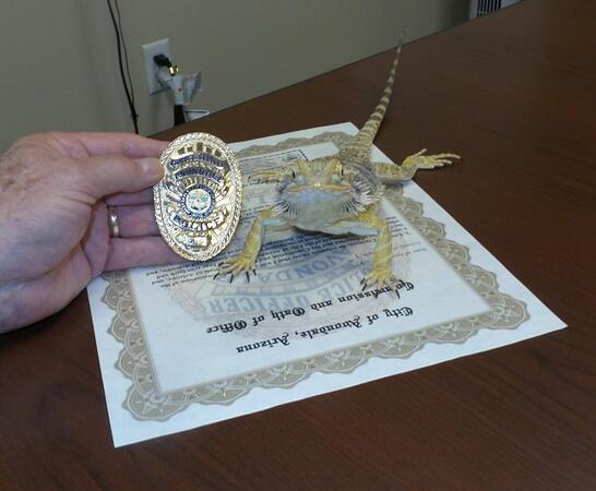 Гущер стана полицай в щата Аризона