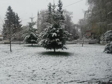 Зимата се върна! Сняг, градушки и дъждове блокираха България