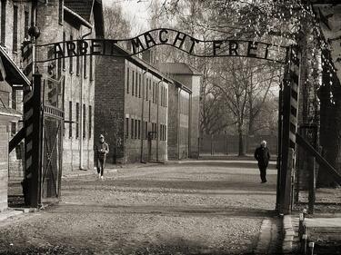 Разсекретиха огромна база данни за Холокоста