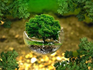 22 април - Международният ден на Земята