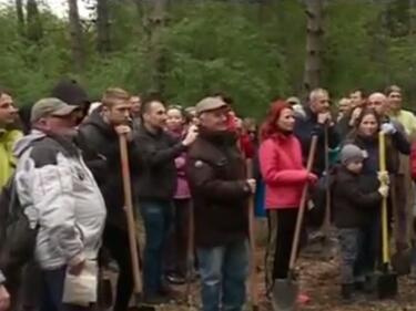 Засадиха 3000 дръвчета в Западния парк в столицата