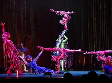 Уникални костюми в шоуто Cirque du Soleil