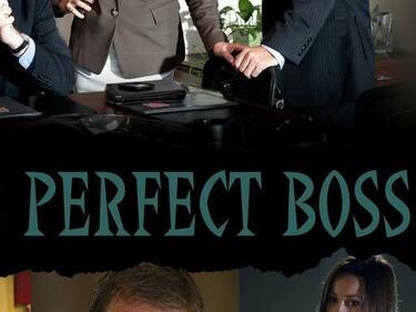 Как си представяте перфектния шеф?