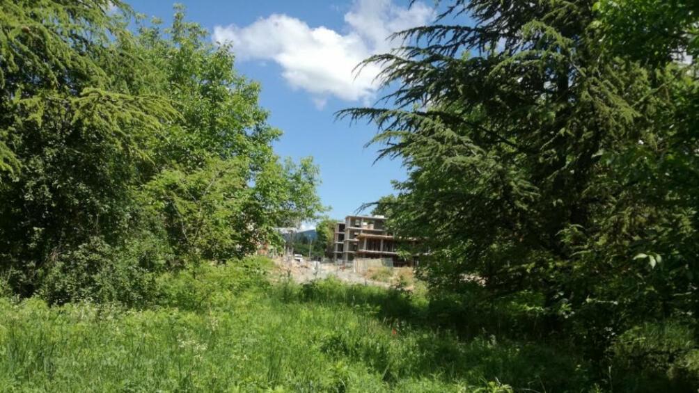 В Стара Загора днес провеждареферендум за бъдещето на парк