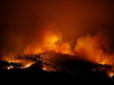 МВнР: Няма пострадали българи при пожара в Португалия
