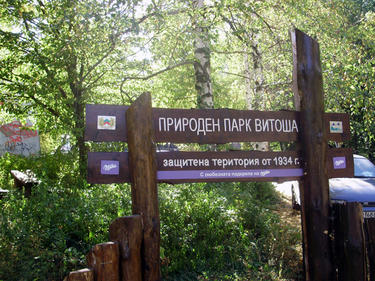 Експресен автобус ще вози до Витоша през лятото