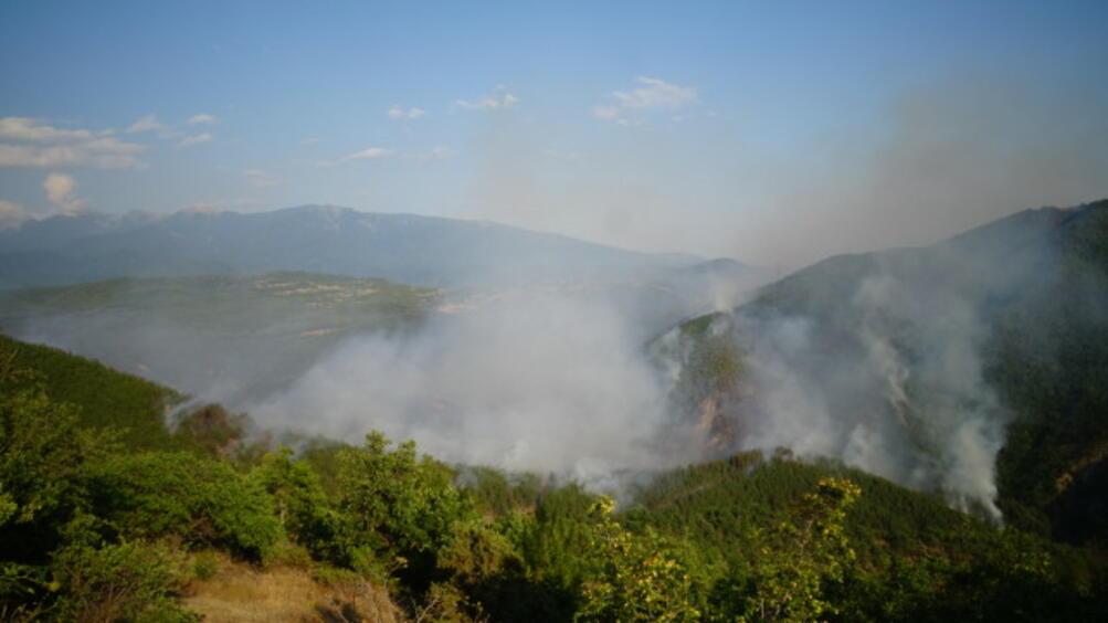 Овладян е големият горски пожар в Пирин, съобщи за Фокус
