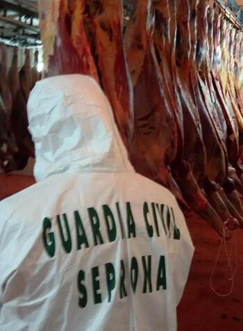 Разбиха група, продавала отровно конско месо за салами в Европа