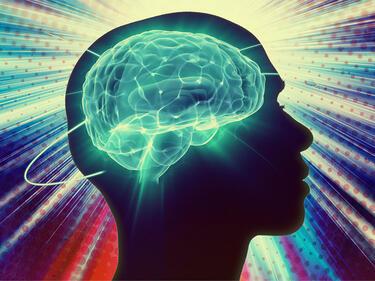 Доказано: Пиянството на младини изцежда мозъка
