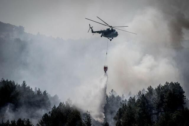 След пожара над Кресна: Екокатастрофа заплашва Пирин (СНИМКИ/ВИДЕО)