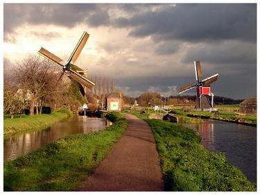 Холандски съд задължи държавата спешно да ограничи замърсяването