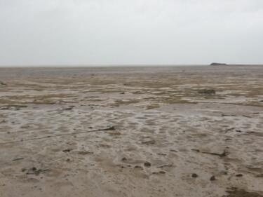 """Метеоролог: Отдръпването на океана след """"Ирма"""" вещае ново зло (ВИДЕО)"""