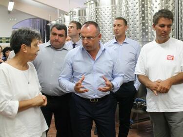 Очакваме страхотна реколта за вино - над 200 000 тона