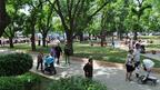 В Европейския ден без коли затвориха центъра на София (СНИМКА)