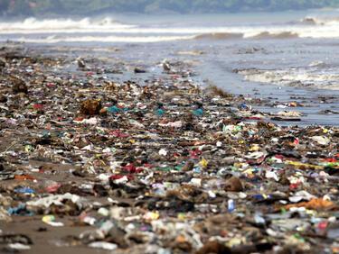 """""""Грийнпийс"""" обвини западни корпорации в замърсяване на океана"""