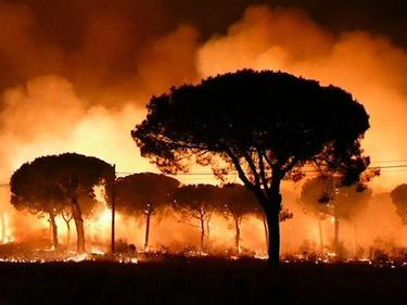 Апокалиптична прогноза: Адски жеги в Европа до 30 години (СНИМКИ)