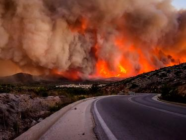 10 загинаха в огненото бедствие, обхванало Калифорния