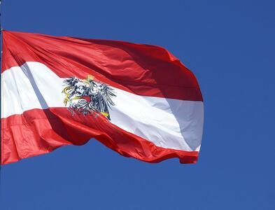 Критик на Меркел и Юнкер става първи дипломат на Австрия