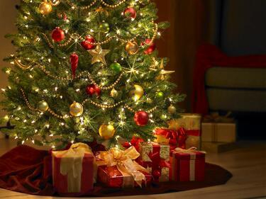 Какво да правим с елхата след Коледа?