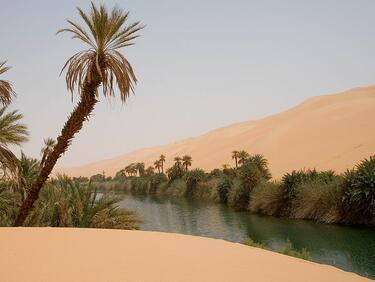 Сняг падна в пустинята Сахара