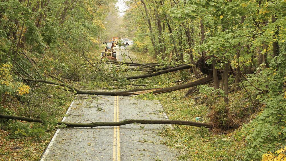 Бедствено остава положението след ураганните ветрове в смолянската община Баните. Стихията