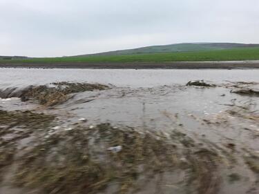 Прелелите реки в Бургаско унищожиха голяма част от реколтата