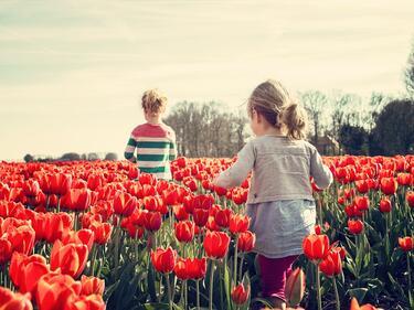 Астрономическата пролет настъпва днес