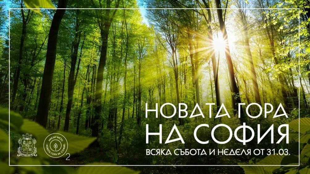 Снимка: Днес стартира вторият залесителен сезон на Новата гора на София