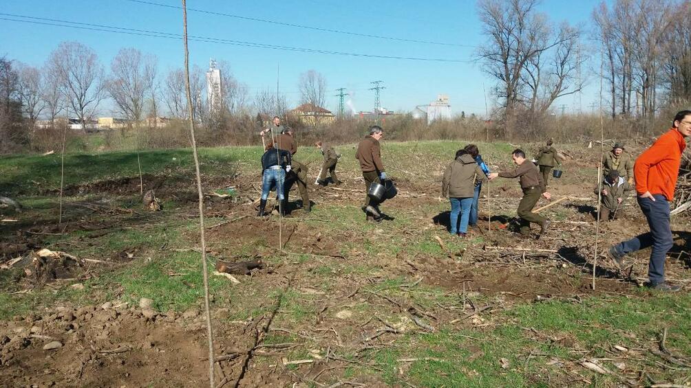 Снимка: Над 70 доброволци се включиха в залесяване по поречието на Искър