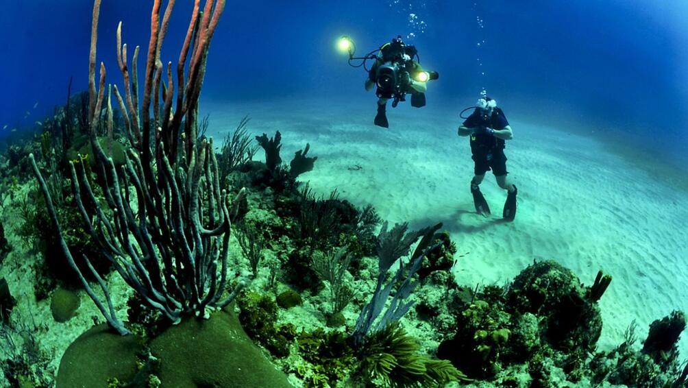 Снимка: Австралия ще възстановява Големия бариерен риг срещу 0.5 млрд.