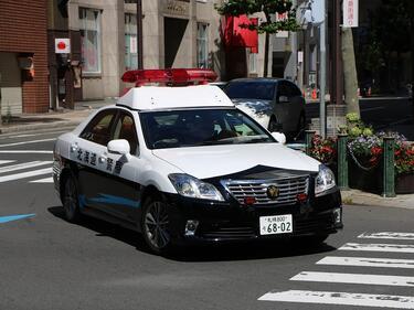 Изчезналите българки от Чикаго вероятно са избягали от вкъщи