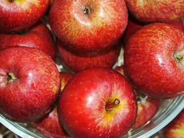 Бързи и лесни ястия, с които да се подготвим за лятото