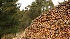 Нова горска техника и оборудване може да се закупят по подмярка 8.6