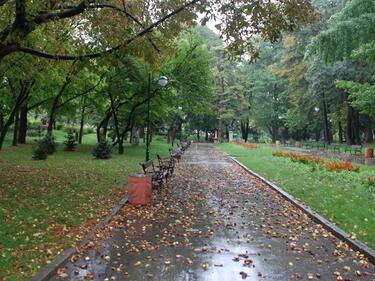Жълт код за валежи и гръмотевици в 21 области