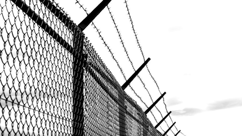 Снимка: Започна изграждането на телена ограда по границата с Румъния