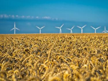 Над 2200 договора подписани по селската европрограма за миналата година