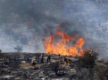 Деветима загинали вследствие на пожарите в Калифорния