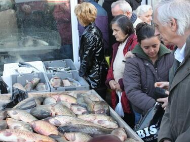 Напролет: Купуваме заразават от Женския пазар онлайн