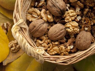 Учени: Яжте орехи за добро настроение